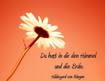 Blumenbild Mit Zitat